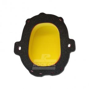 DT1 Filter für Honda CRF 450 R / RX (´21>)